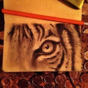 tiger_stripes_lukasl