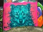 tealwolf_lukasl